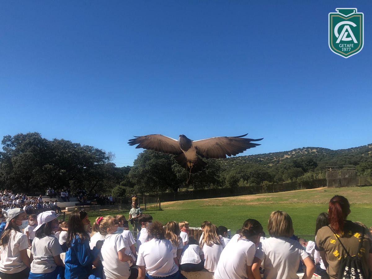 safari-park-colegio-los-angeles-09