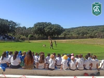 safari-park-colegio-los-angeles-03