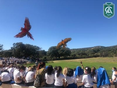 safari-park-colegio-los-angeles-10