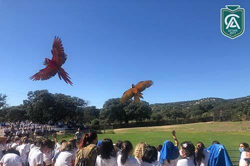 safari-park-colegio-los-angeles-dest